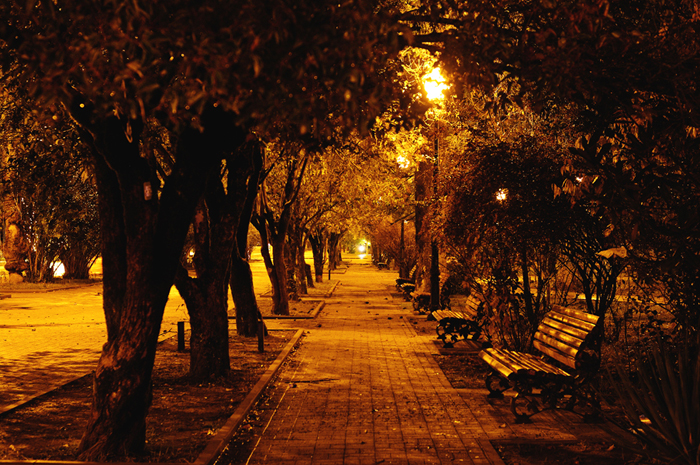 Аллеи вечернего парка Сухума