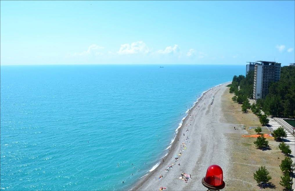 Солнечный берег Пицунды