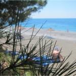 Отдых в Пицунде у моря 2015 (отзыв)